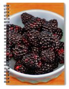 Blackberries 134 Spiral Notebook