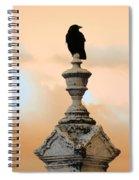 Blackbird And A Coral Sky Spiral Notebook