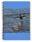 Blackduck Takeoff Run Spiral Notebook