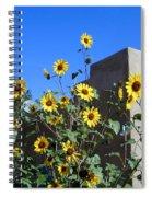 Blackeyed Susans And Adobe Spiral Notebook