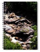 Blackwater Canyon #4 Spiral Notebook