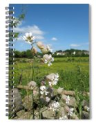 Bladder Campion On Stone Wall Spiral Notebook