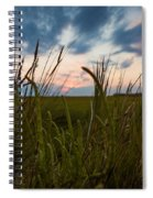 Blades Of Sunset Spiral Notebook