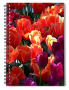 Blankets Of Tulips Spiral Notebook