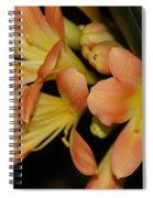 Blast Of Sunshine Spiral Notebook