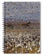 Blast Off Bosque Del Apache Spiral Notebook