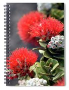 Blazing Blooms Of Ohia Flowers Spiral Notebook