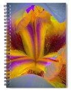 Blazing Heart Of An Iris Spiral Notebook