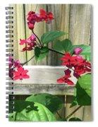 Bleeding Heart Clerodendrum 2 Spiral Notebook