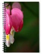 Bleeding Heart Print Spiral Notebook