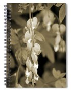 Bleeding Hearts In Sepia Spiral Notebook