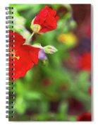 Bleeding Spring 3 Spiral Notebook