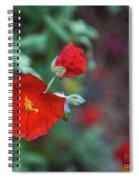 Bleeding Spring Spiral Notebook