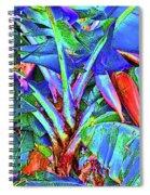 Bleu Banana Spiral Notebook