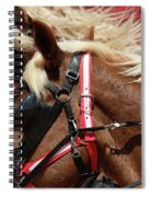 Blinders On Spiral Notebook
