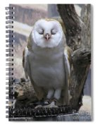 Blinking Owl Spiral Notebook