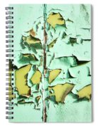 Blistered Paint Spiral Notebook