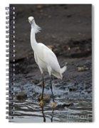 Blond Beauty.. Spiral Notebook