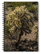 Blondie Wezbo Spiral Notebook