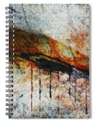 Blood From A Stone Spiral Notebook