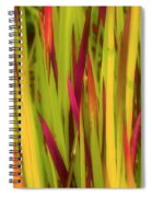 Blood Grass Spiral Notebook