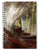 Blood Redwoods Spiral Notebook