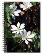 Bloodwart 1115 Spiral Notebook