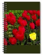 Bloom Where Your Planted Spiral Notebook