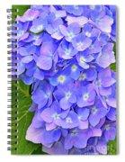 Blooming Blue Hydrangea Spiral Notebook