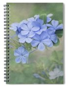 Blooming Blues Spiral Notebook