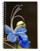 Blooming Butterfly Spiral Notebook