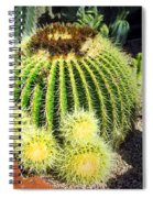 Blooming Cactus Two Spiral Notebook