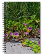 Blooming Cross Vines Along The Beach Spiral Notebook