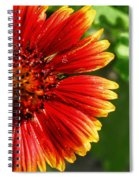 Blooming Flower Spiral Notebook