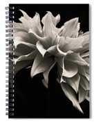 Blooming II Spiral Notebook