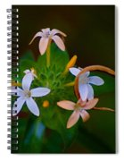Blooming Joy Spiral Notebook