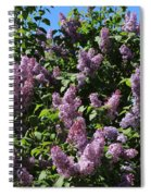 Blooming Lilacs Spiral Notebook