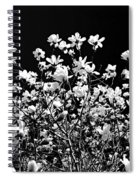 Blooming Magnolia Tree Spiral Notebook