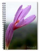 Blooming Purple Flower Spiral Notebook