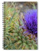 Blooming Purple Teasel Spiral Notebook