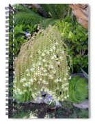 Blooming Succulent Plant. Amazing Spiral Notebook