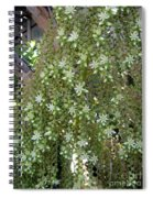Blooming Succulent Plant. Big And Beautiful Spiral Notebook