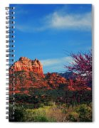 Blooming Tree In Sedona Spiral Notebook