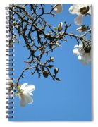 Blooming Trees Art Print White Magnolia Flowers Baslee Troutman Spiral Notebook