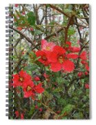 Blooms In The Alley Spiral Notebook