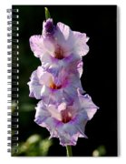 Blooms On A Stick Spiral Notebook