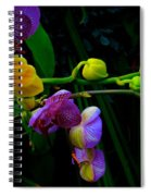 Blooms To Come Spiral Notebook