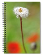 Blossom At Amatzia Forest -1 Spiral Notebook