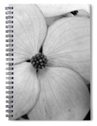Blossom In Black And White Spiral Notebook