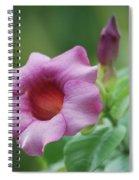 Blossom Of Allamanda Spiral Notebook